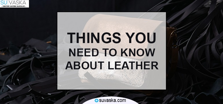 Things You Need to Know About Leather